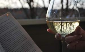 vino-i-knjiga